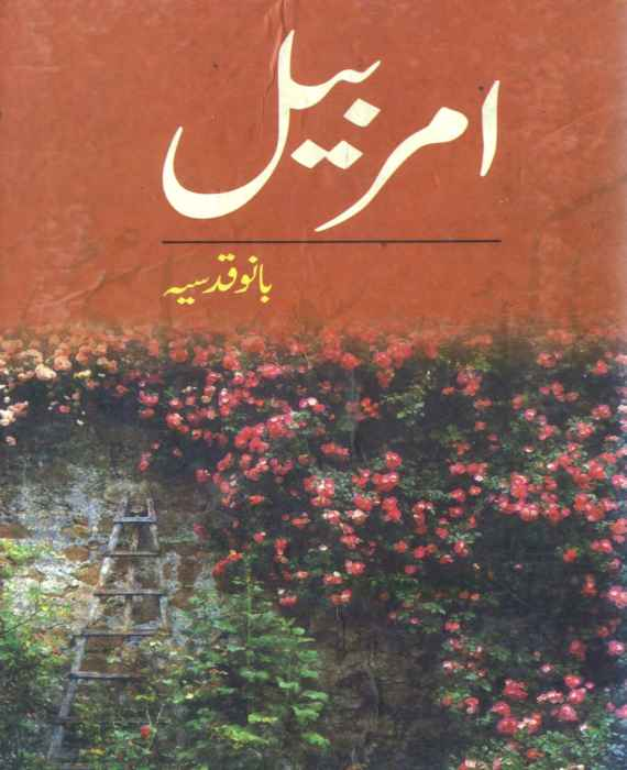 Amar Bail By Bano Qudsia Free Download Pdf The Library Pk